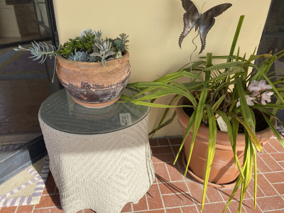 Patio Plants ~ Glass Top Wicker Table