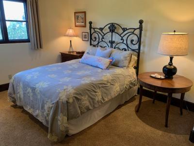 Queen Bed Iron Scroll Frame and Mattress Set