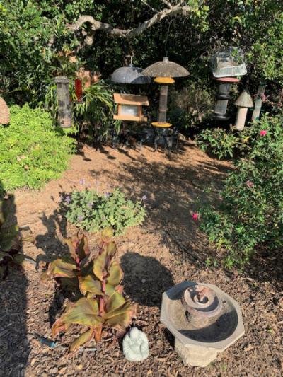 Tiny Birdbath ~ Buddha