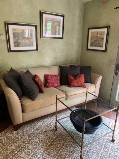 Linen Queen Sofa Bed