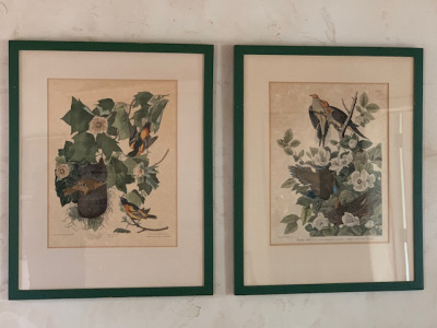 Pr. Framed Botanics