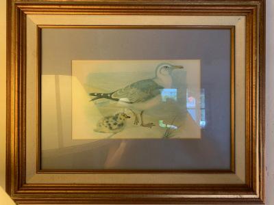 "Framed ""Bird"" Print (1 of 3)"