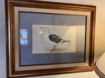 "Framed ""Bird"" Print (3 of 3)"