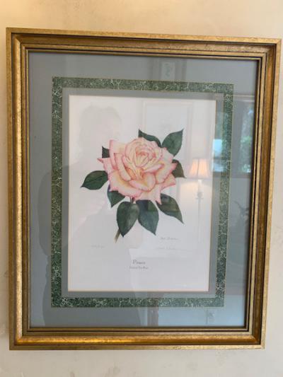 Framed Botanic